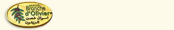Entete-BrancheOlivier-565x100
