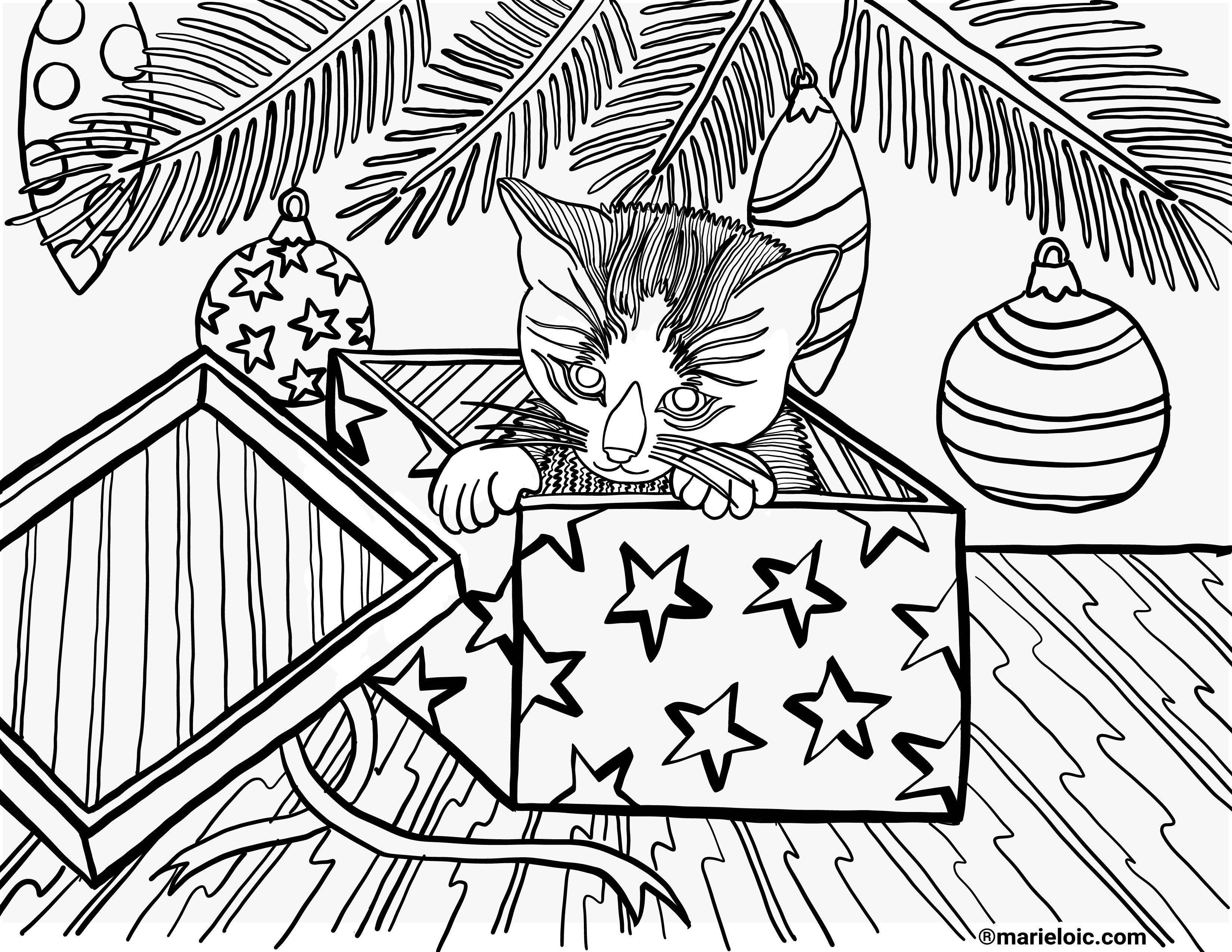 Coloriage Chat Cadeau.Dessin A Colorier Chaton Dans Une Boite Marie Loic Senamaud